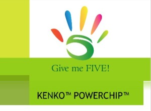 Kenko Power Chip for Magnetic Thereapy
